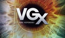 VGX 2013, le compte-rendu