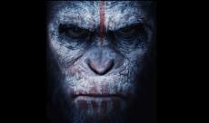 Des court-métrages expliquent le gap entre Rise et Dawn of the Planet of the Apes
