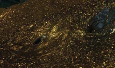 The Hobbit 2 dépasse les 600 millions de dollars
