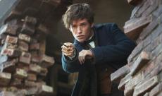 Fantastic Beasts : une featurette sur la 3D et des TV Spots