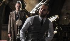 Les Animaux Fantastiques : Jude Law connaît toute l'histoire de Dumbledore grâce à J.K.Rowling