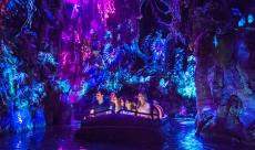 Disney vient d'ouvrir la section World of Pandora en Californie