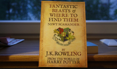 J.K. Rowling va publier le scénario de Fantastic Beasts and Where to Find Them