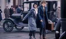 Deux nouveaux TV Spots pour Fantastic Beasts
