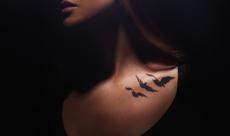 M-83 dévoile un nouveau single pour Divergent