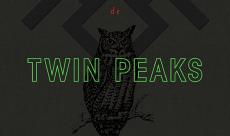 L'histoire secrète de Twin Peaks, la critique