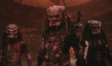 Pas de Predators en CGI pour le film Shane Black
