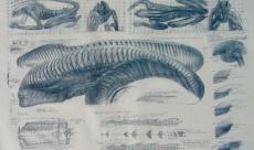 H.R. Giger s'est inspiré des lèvres de Michelle Pfeiffer pour son Alien 3