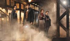 J.K.Rowling promet 5 films pour Les Animaux Fantastiques
