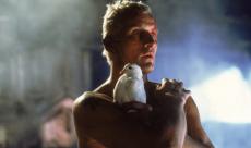 Rutger Hauer dézingue Blade Runner 2049