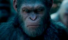 La Planète des Singes va revenir au cinéma sous la direction de Wes Ball