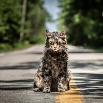 Le remake de Pet Sematary s'illustre dans de premières images